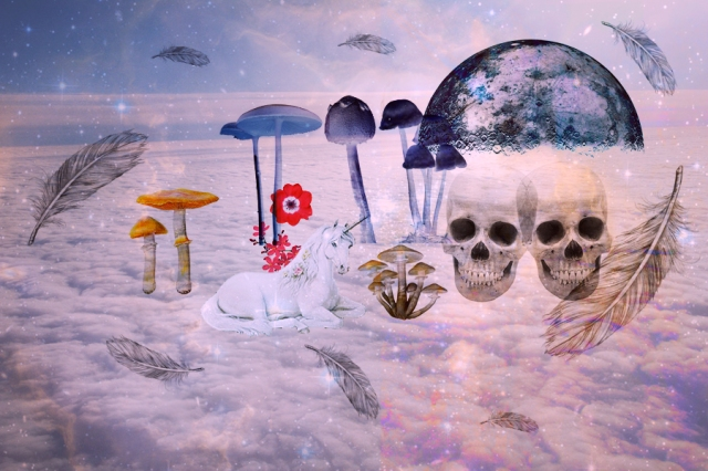 end of the world facebook cover image art design hipster tumbr unicorns galaxy mushrooms 2