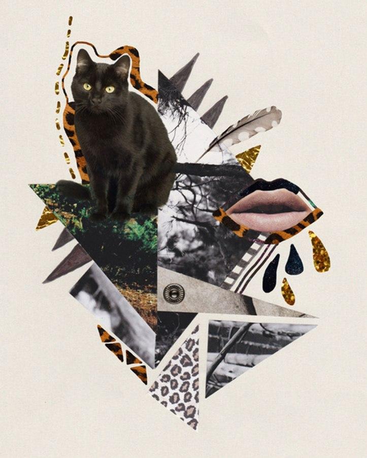 cat-collage-hipster-art-kitten-cool-art-design