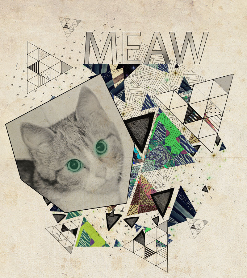 collage-art-geometric-vasare-nar-triangles-hipster-aztec-vintage-tutorial-cat-kitten