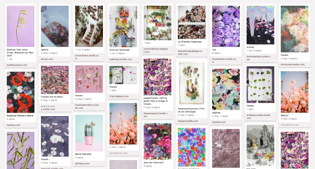 flowers floral pinterest inpiration collage artists moodboard home decor beautiful stunning idea trick how to decorate flowers roses tumblr