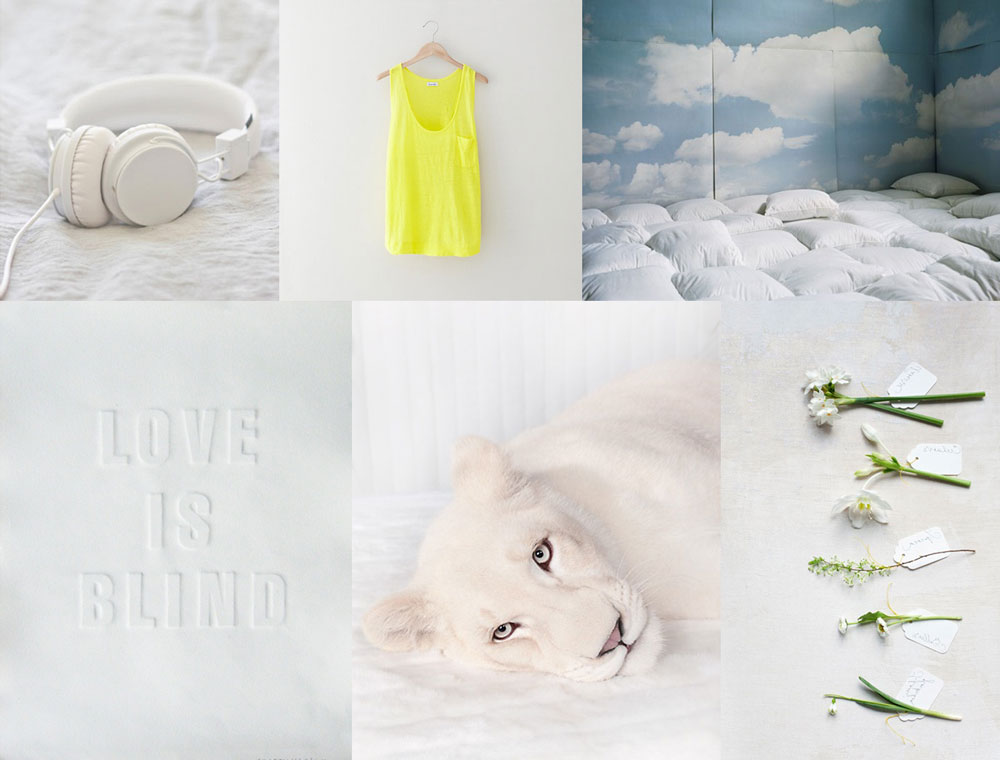 fashion style moodboard collage animal music editorial
