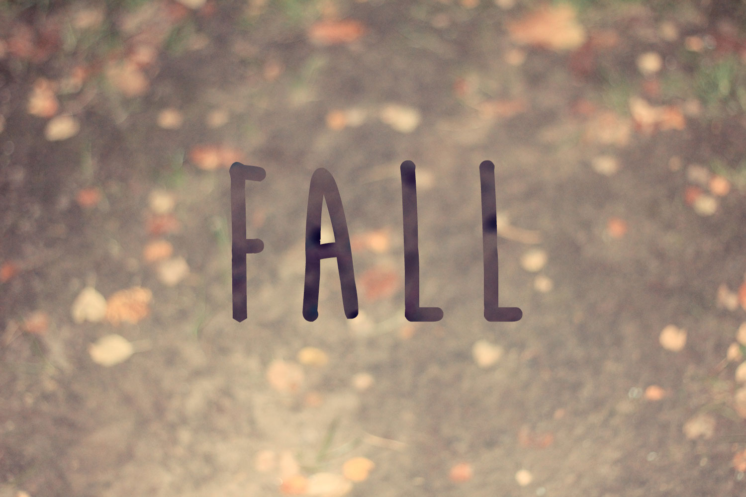Vintage Fall Photography Tumblr Quotes
