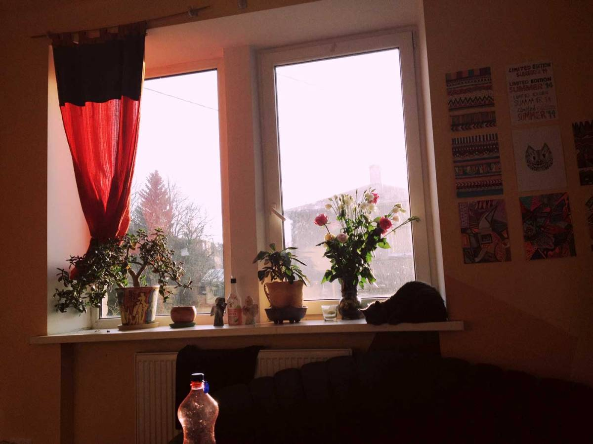 home-photography-interior-cat-chilling-sunday-