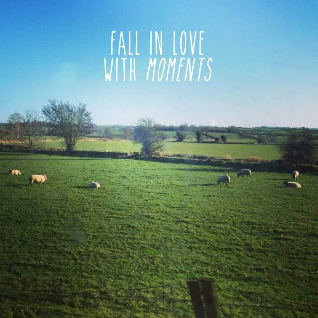 PHOTOGRAPHY-inspiration-sheep-typography-fall-in-love-with-momments