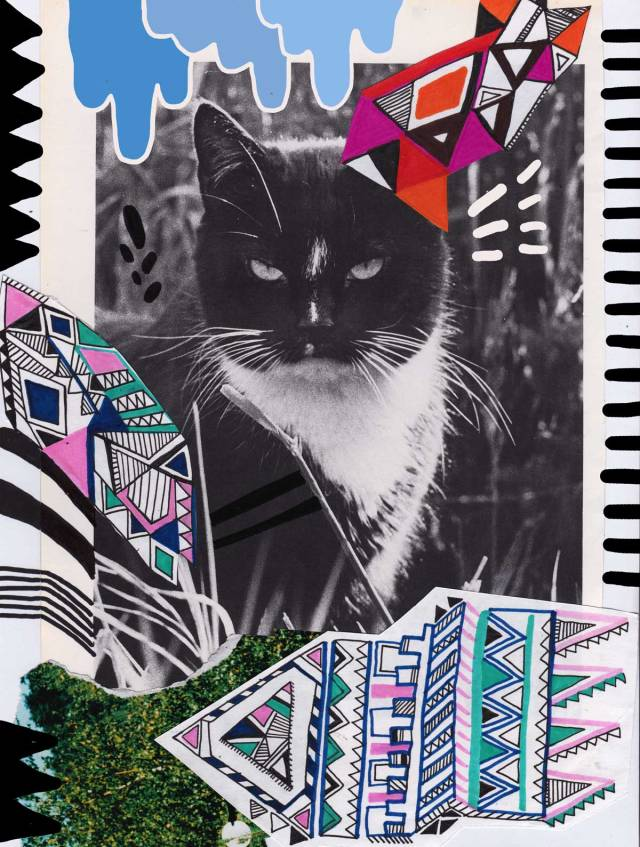 Mr-grumpy-cat-collage-mixed-media-art-design-drawing-vasare-nar-creative-